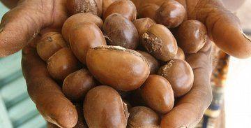 Nilotica Shea Butter - Gezicht, Huid en Haar