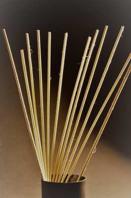 Geurstokjes 12st Bamboe 25cm Navulling