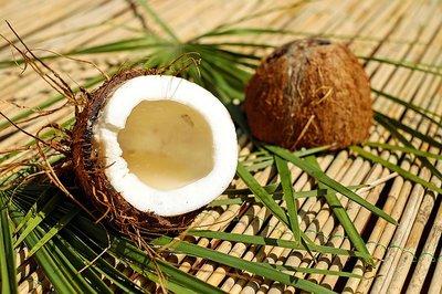 Kokosbutter Puur Liter - Stazak