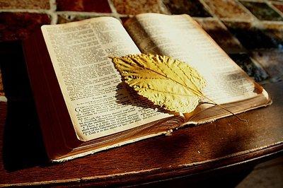 Bijbel oliën