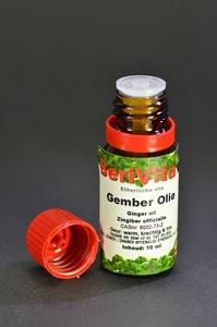 Gember Olie 10ml