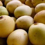 marula vrucht